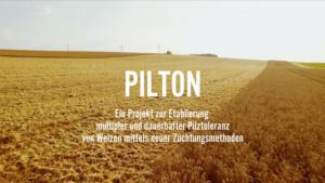 Projekt PILTON