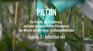 Pilton Update 3 Bild
